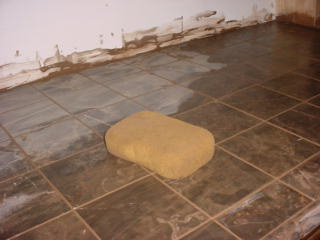 Cleaning grout.