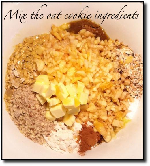 Oat Cookie Unmixed Ingredients