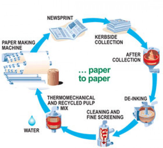 Behind The Scene Paper Recycling