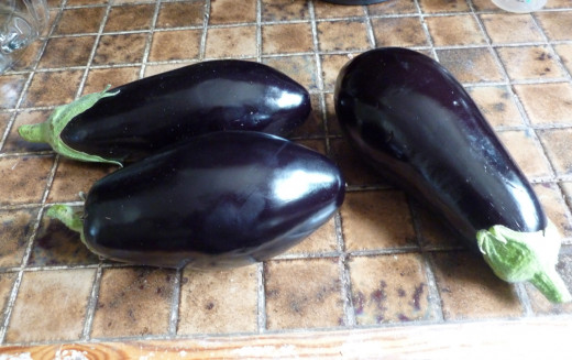 Beautiful purple eggplants