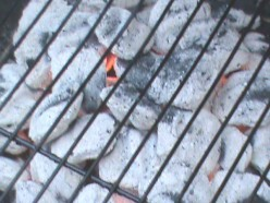 How to Light, Use And Cook With A Gas or Charcoal Grill!