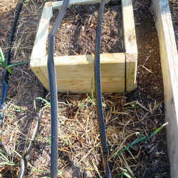 Increase the loose soil depth with a simple box.
