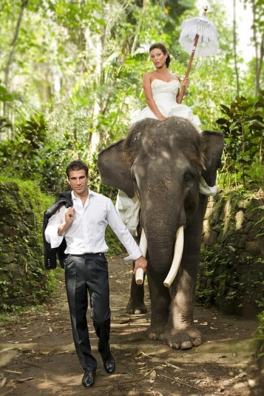 Bali Elephant Safari Wedding