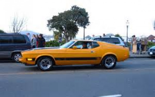 1973 Mach I