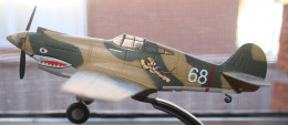 ANOTHER VIEW OF A MODEL OF THE TIGER THAT FLIES.