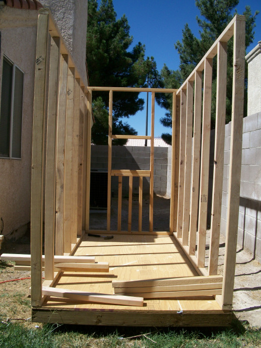 The first three walls positioned on the floor, before fastening.  Pieces of lumber are holding them in place against a light breeze.