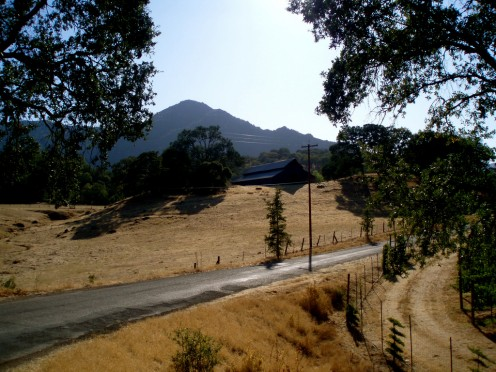 Mendocino County country roads