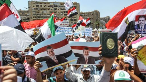 Protestors Against the Morsi's Ouster