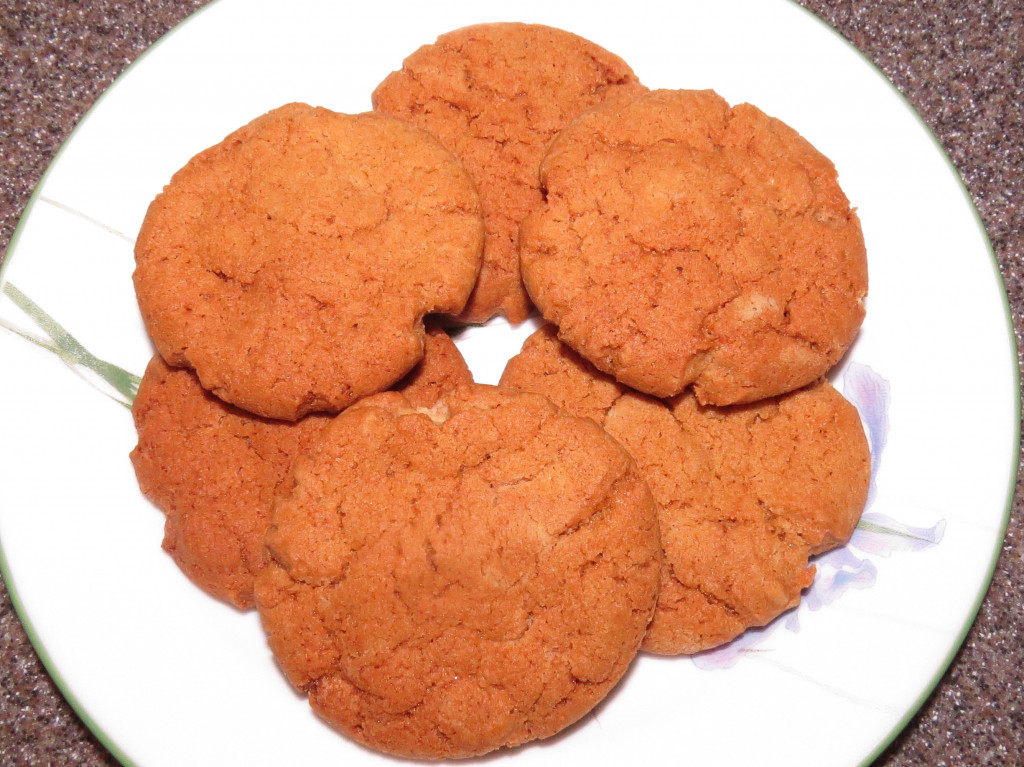 Hot And Spicy Gingersnaps Recipe — Dishmaps