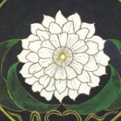 missprice profile image