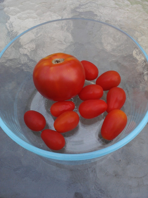 Tomatoes (water mainly)