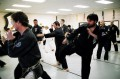 Definition and Kinds of Martial Arts