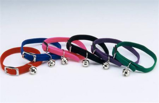This shows a collection of fairly inexpensive break-away cat collars.