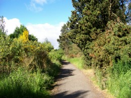 Another popular entrance path to Lochore Meadows