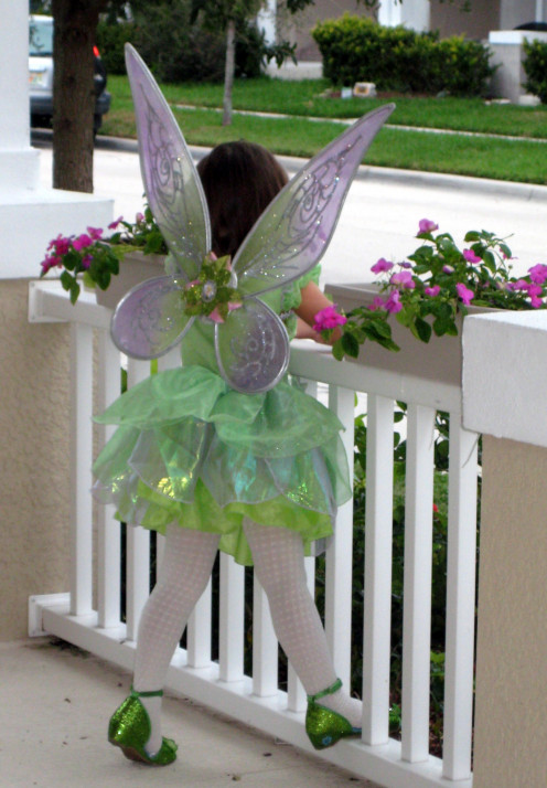 This photo captures the beauty of Tinkerbell's wings and shoes.