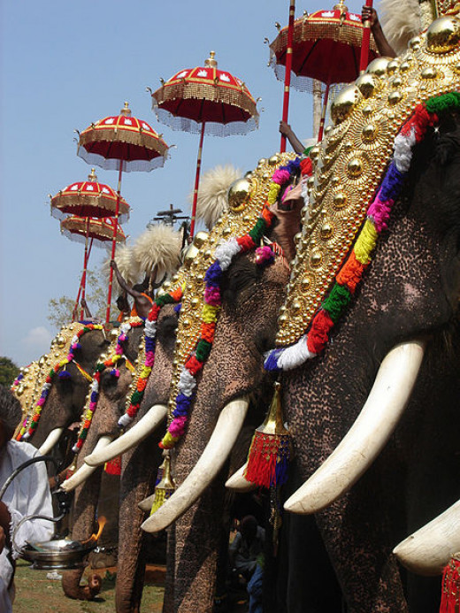 A picture taken during the famous Thrissur Pooram