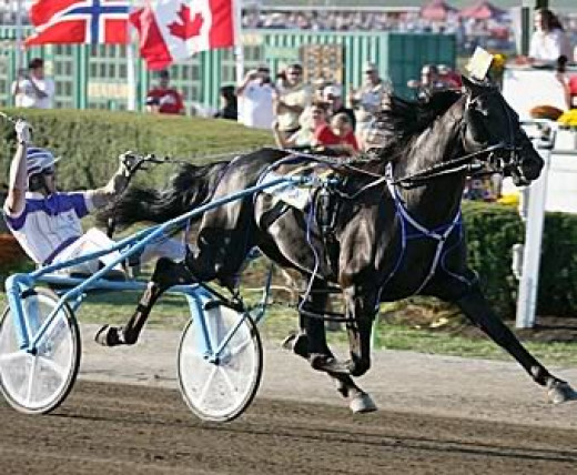 2008 Winner, SHADOW PLAY, driven by David Miller of Ohio