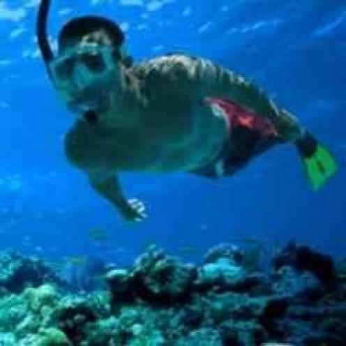 Snorkeling in the Deep Blue Sea