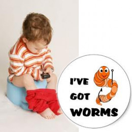 What d you know about Stomach Worms?