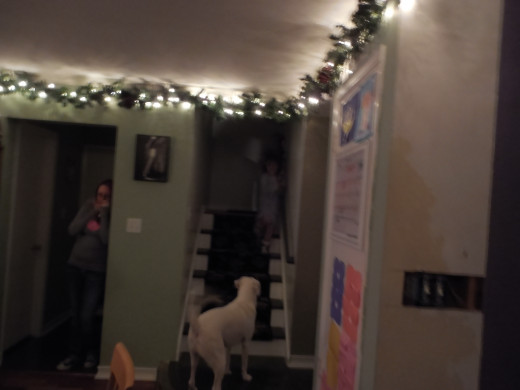 "Ron calls out in the most Santa voice he can, ""HO-HO-HO!"" The giggling and shouting ensues. ""Santa's here!""  Laurel hides...she knows Santa is not  here! =)  Cork gets excited when the charging children come running down the stairs."