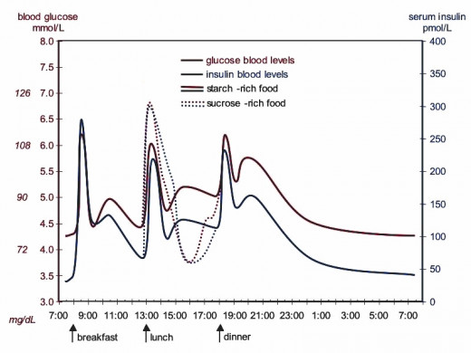 The extra high peak in blood sugar after eating sucrose in clearly shown, as is the drop below normal levels.