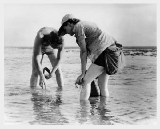 Rachel Carson with Bob Hines conducting Marine Biology Research 1952