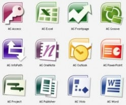 Which Microsoft Office application do you use the most?