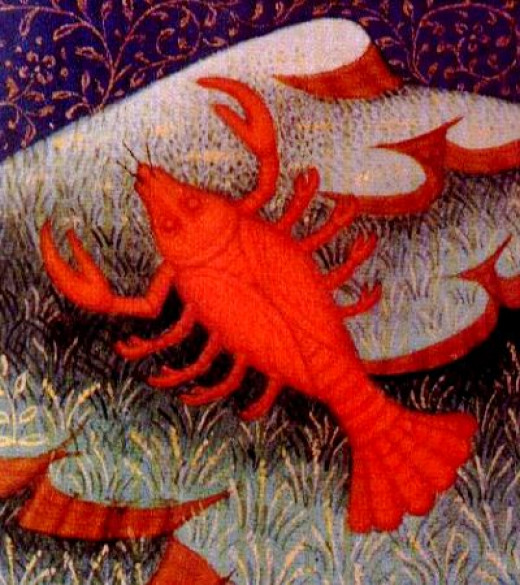 The Zodiac Sign Cancer the Crab