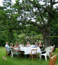How to Plan and Host a Picnic Party