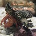 Hermit Crab Names