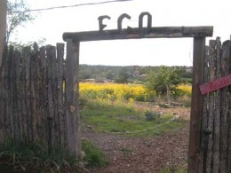 A reclaimed field at EcoVersity.