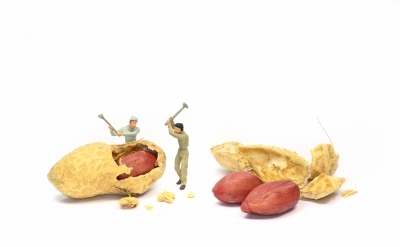 "People Working For Peanuts"" by Grant Cochrane"