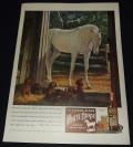 eBay H*O*R*S*E* June 2013--Vintage Print Ads Niche