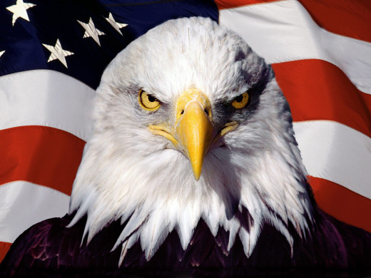 We are America and we have a beak.