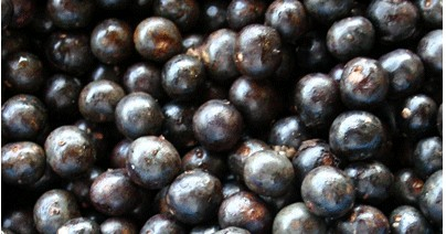 Acai Berry Weight Loss Super Food