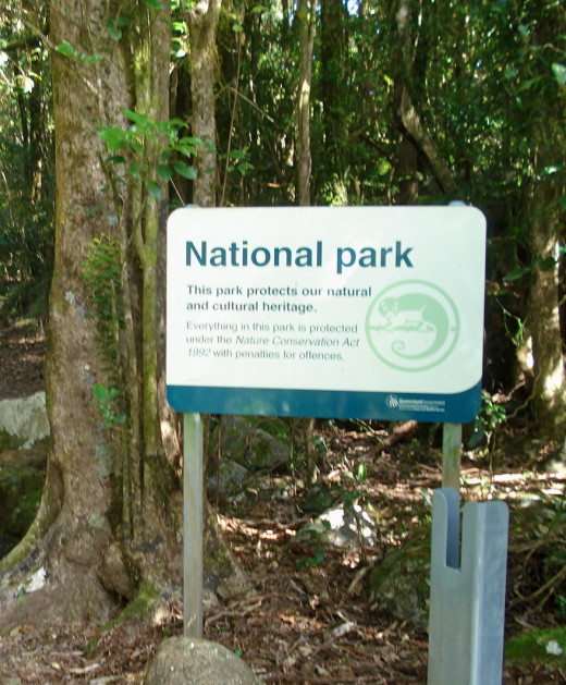 An Entrance to the World Heritage Springbrook National Park