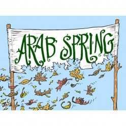 Arab Spring In Big Dilemma.