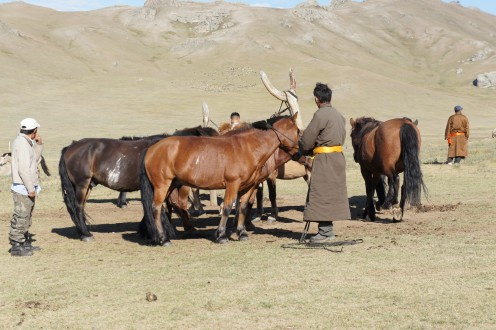 Nomads saddling our ponies at Khongor Horse Camp, White Lake.
