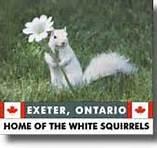Exeter, Ontario