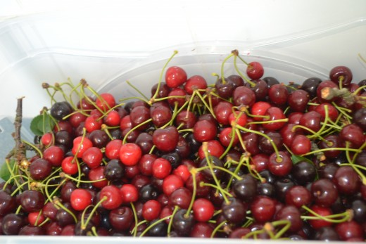 Cherries contain vitamin C  which helps to reduce inflammation in gout and other types of arthritis
