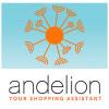 Andelion profile image