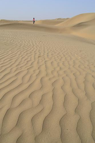 Alone in the desert from Antony Lee flickr.com