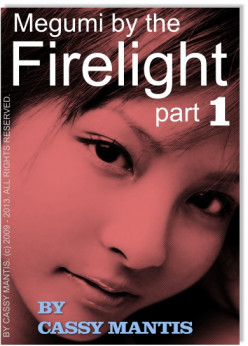 Megumi By The Firelight - A Book Chapter Excerpt (part 1)
