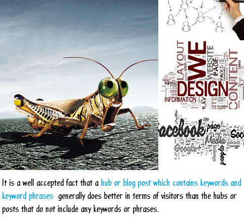 Creating a designer Hub