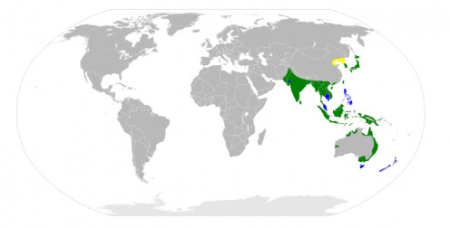 Distribution of the Eastern Great Egret. Colour code: yellow: breeding, green: year-round, blue: nonbreeding.