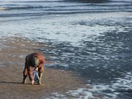 Seaside Scavenger Hunts get them playing outside.