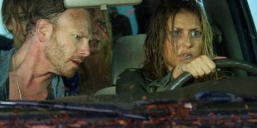 Fin (Ian Ziering) and Nova (Cassie Scerbo)