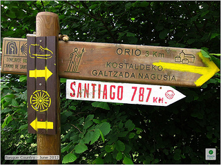 787 km to the Camino de Santiago
