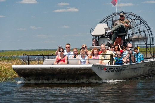 Ariboat tours take you through the wetlands to see gators.