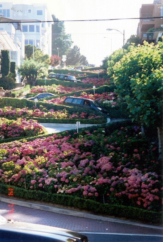 Lombard Street, the street with eight hairpin turns...and I do mean hairpin!